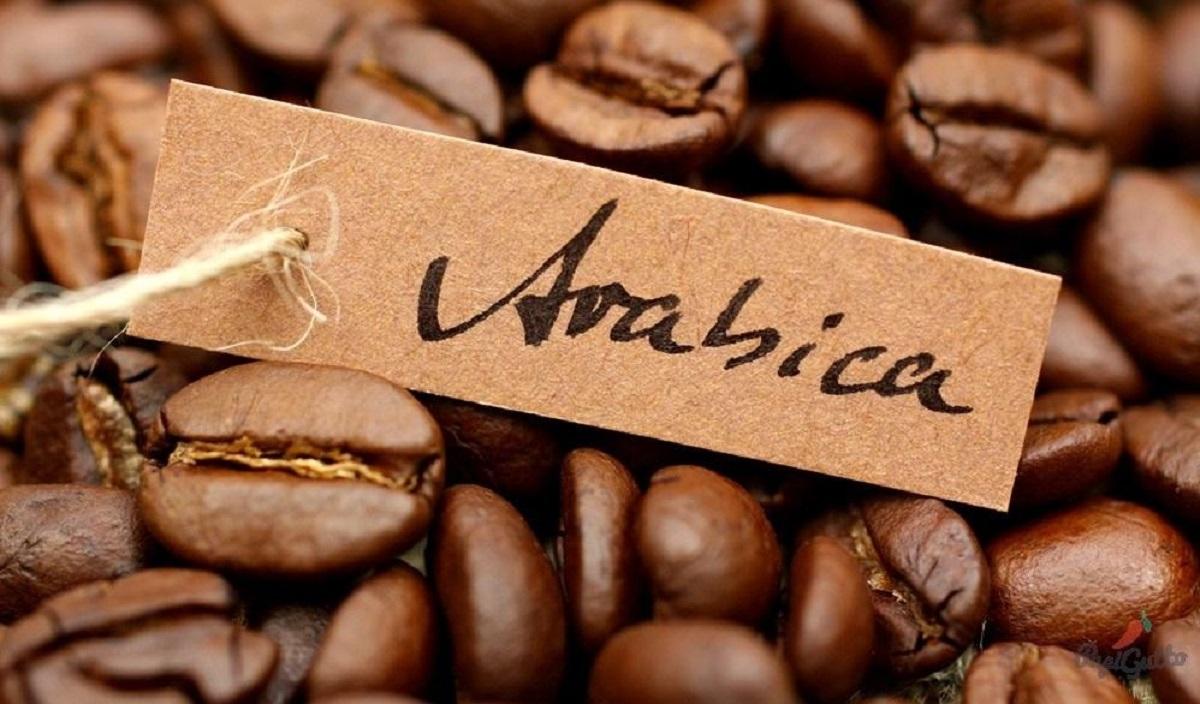Сорт кофе