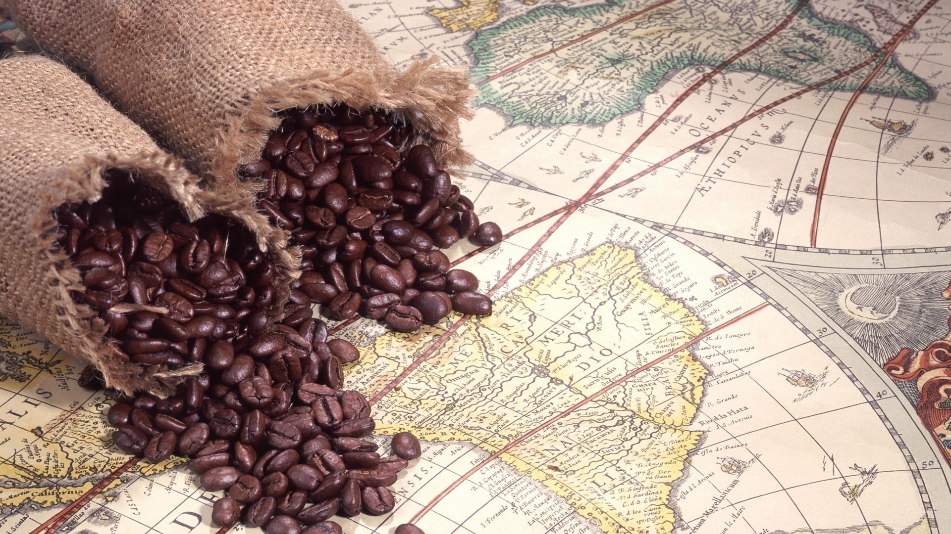 История возникновения кофе в Европе